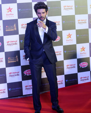 Kartik Aaryan - Photos: Star Screen Awards 2019 At Bkc