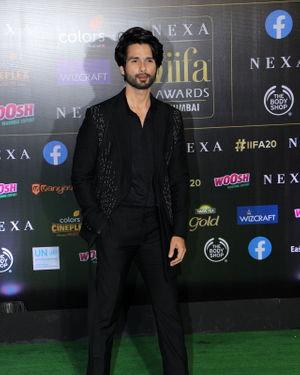 Shahid Kapoor - Photos: Celebs At The Green Carpet Of The IIFA Rocks 2019