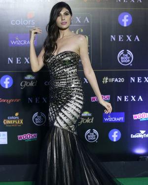 Elnaaz Norouzi - Photos: Green Carpet Of IIFA Awards 2019 | Picture 1683619