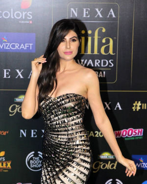Elnaaz Norouzi - Photos: Green Carpet Of IIFA Awards 2019