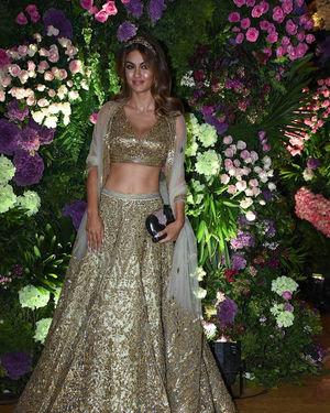 Natasha Poonawalla - Photos: Armaan Jain & Anissa Malhotra Wedding Reception