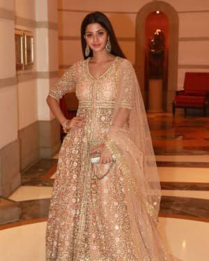 Vedhika Kumar - Photos: Wedding Reception Of Rikuji's Daughter At ITC Grand Maratha