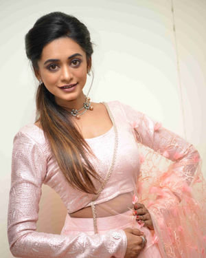 Chandana Segu - Ramesha Suresha Film Press Meet Photos