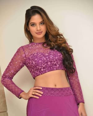 Tanya Hope - Yajamana Film Success Meet Photos | Picture 1632569