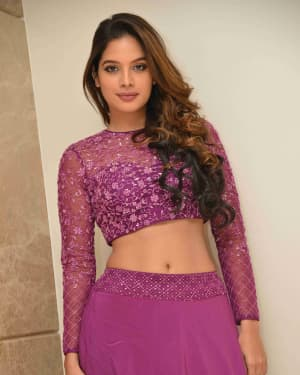 Tanya Hope - Yajamana Film Success Meet Photos | Picture 1632570