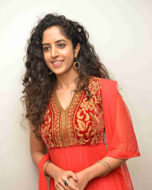 Greeshma Sridhar - Malgudi Days Film Press Meet Photos | Picture 1695088