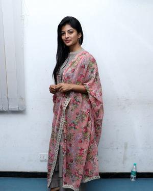 Anandhi - Gundu Movie Success Meet Photos | Picture 1707004
