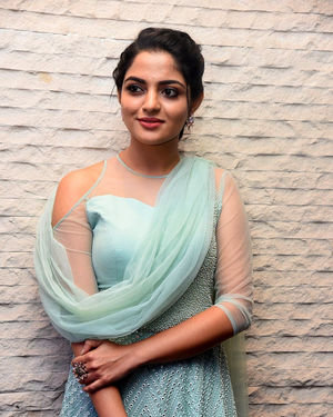 Nikhila Vimal - Donga Movie Pre-release Event Photos | Picture 1707896