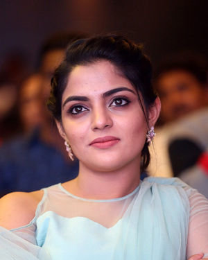 Nikhila Vimal - Donga Movie Pre-release Event Photos | Picture 1707886