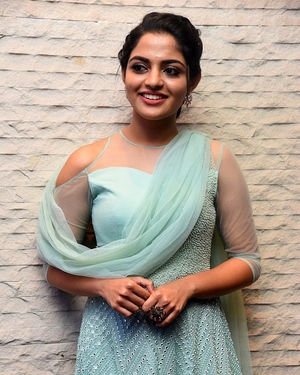 Nikhila Vimal - Donga Movie Pre-release Event Photos | Picture 1707899