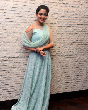 Nikhila Vimal - Donga Movie Pre-release Event Photos | Picture 1707900
