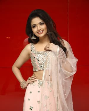 Shirin Kanchwala - Nenjamundu Nermaiyundu Odu Raja Movie Audio Launch Photos