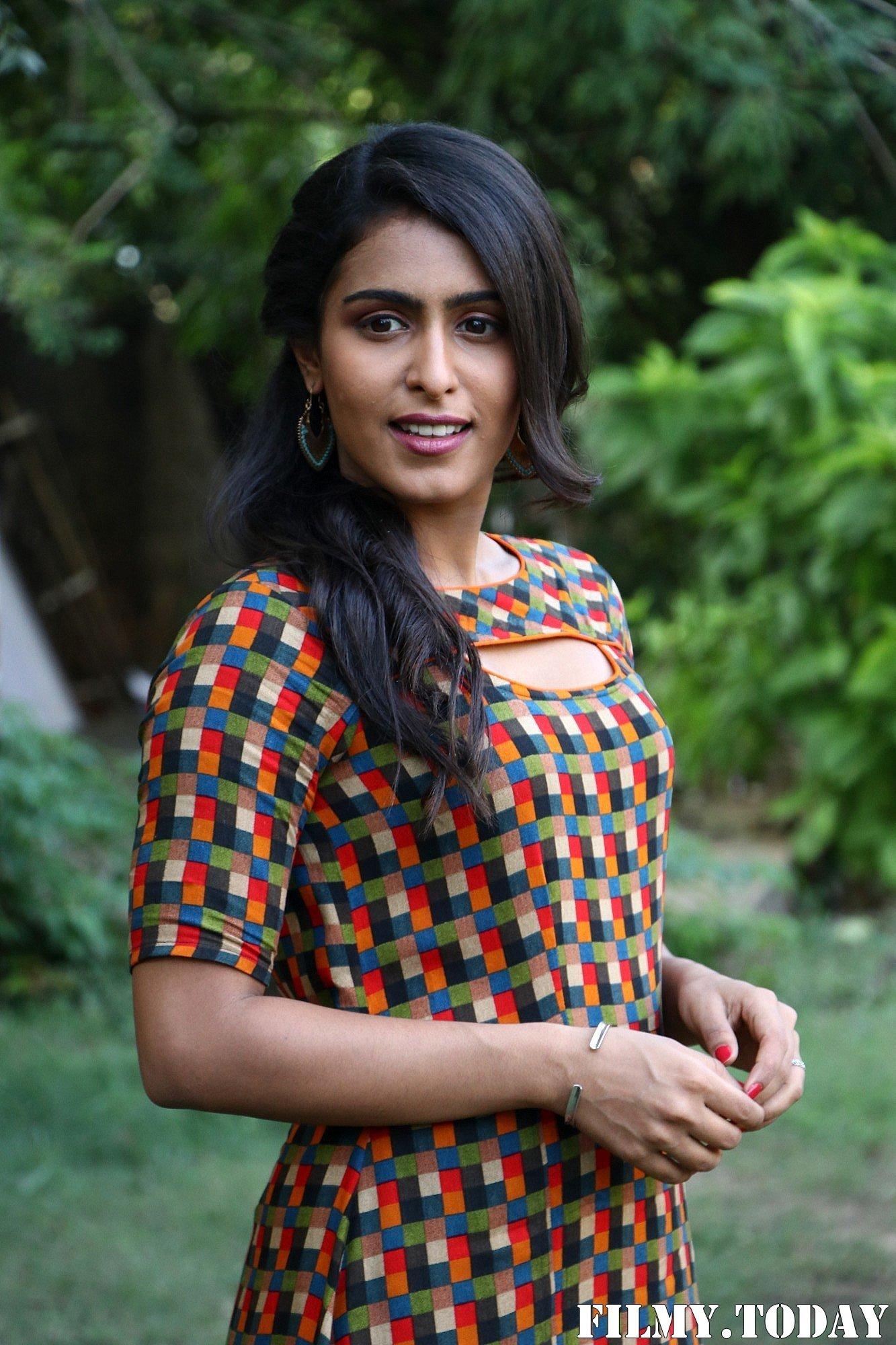 Samyuktha Hegde - Pappy Tamil Movie Press Meet Photos | Picture 1688729