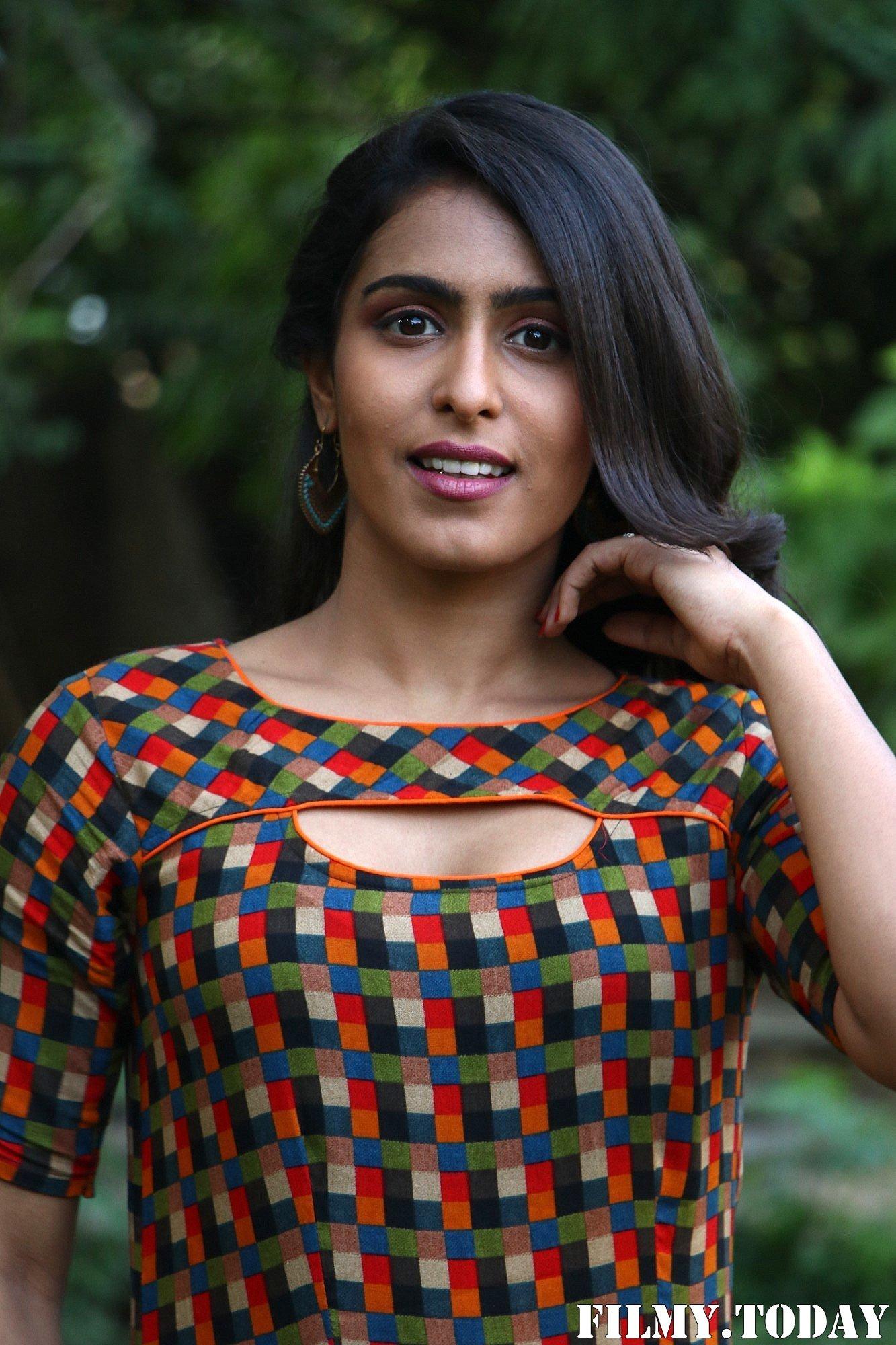 Samyuktha Hegde - Pappy Tamil Movie Press Meet Photos | Picture 1688723