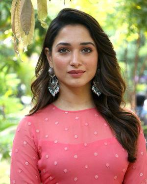 Tamanna Bhatia - Petromax Movie Press Meet Photos