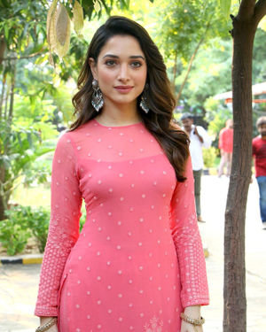 Tamanna Bhatia - Petromax Movie Press Meet Photos | Picture 1690479