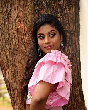 Iniya - Mamangam Telugu Movie Trailer Launch Photos | Picture 1704501