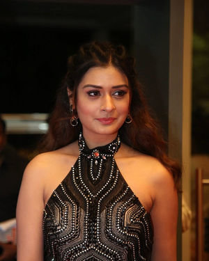 Payal Rajput - Sakshi Excellence Awards 2018 Photos