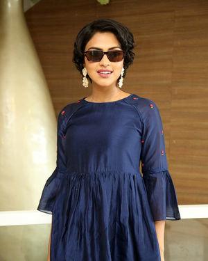 Amala Paul - Rakshasudu Movie Success Meet Photos | Picture 1674183