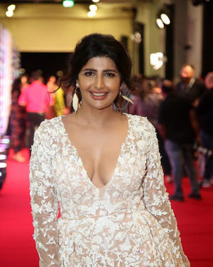 Rajshri Ponnappa - SIIMA Awards 2019 Photos