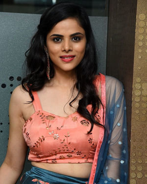 Kriti Garg - 2 Hours Love Movie Pre Release Event Photos