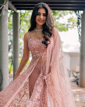 Nabha Natesh Latest Photoshoot | Picture 1703577