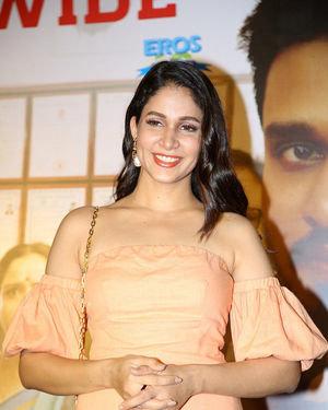 Lavanya Tripathi - Arjun Suravaram Movie Success Meet Photos