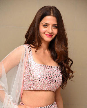 Vedhika Kumar - Ruler Telugu Movie Success Meet Photos | Picture 1710434