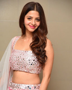 Vedhika Kumar - Ruler Telugu Movie Success Meet Photos | Picture 1710427