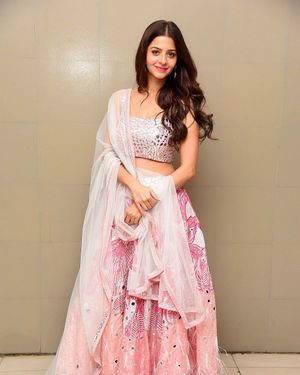 Vedhika Kumar - Ruler Telugu Movie Success Meet Photos | Picture 1710436