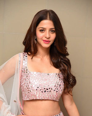 Vedhika Kumar - Ruler Telugu Movie Success Meet Photos | Picture 1710433