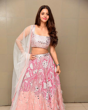 Vedhika Kumar - Ruler Telugu Movie Success Meet Photos | Picture 1710428