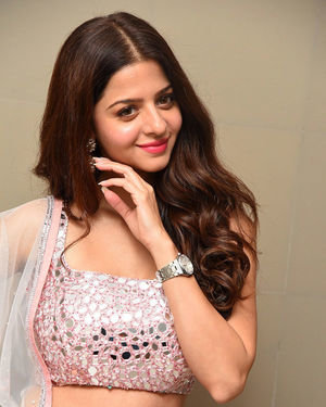 Vedhika Kumar - Ruler Telugu Movie Success Meet Photos | Picture 1710440