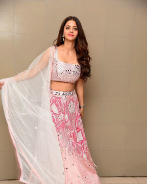 Vedhika Kumar - Ruler Telugu Movie Success Meet Photos | Picture 1710429