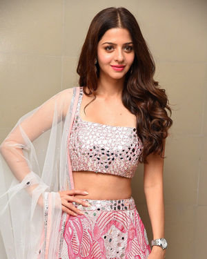 Vedhika Kumar - Ruler Telugu Movie Success Meet Photos | Picture 1710438