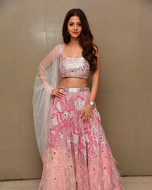 Vedhika Kumar - Ruler Telugu Movie Success Meet Photos | Picture 1710422