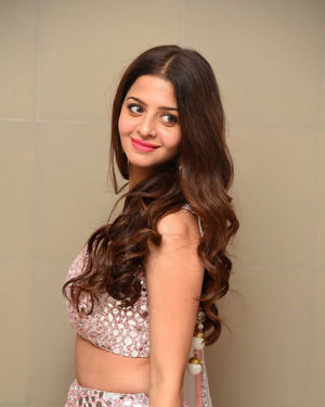 Vedhika Kumar - Ruler Telugu Movie Success Meet Photos | Picture 1710432