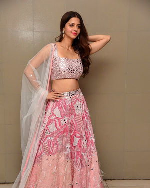 Vedhika Kumar - Ruler Telugu Movie Success Meet Photos | Picture 1710424