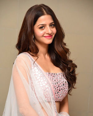 Vedhika Kumar - Ruler Telugu Movie Success Meet Photos