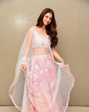 Vedhika Kumar - Ruler Telugu Movie Success Meet Photos | Picture 1710435