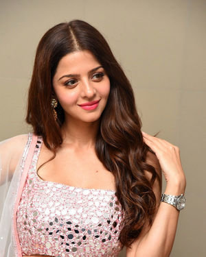 Vedhika Kumar - Ruler Telugu Movie Success Meet Photos | Picture 1710439