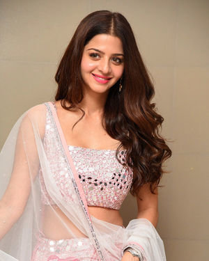 Vedhika Kumar - Ruler Telugu Movie Success Meet Photos | Picture 1710437