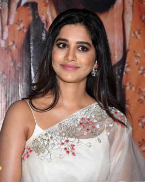 Nabha Natesh - Ismart Shankar Movie Press Meet At Vijayawada Photos