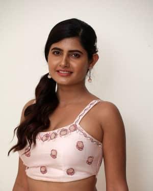 Ashima Narwal - SIIMA Awards 2019 Curtain Raiser Event Photos