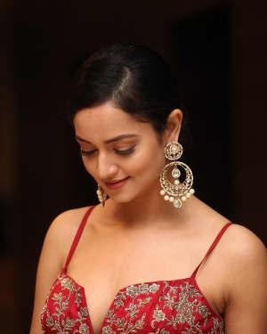 Shanvi Srivastava - SIIMA Awards 2019 Curtain Raiser Event Photos | Picture 1667030