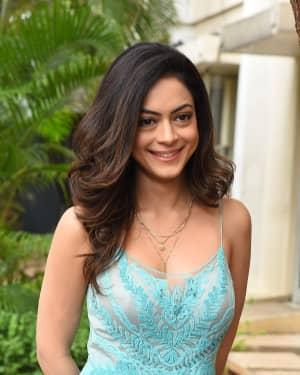 Anya Singh - Ninu Veedani Needanu Nene Movie Trailer Launch Photos | Picture 1658529
