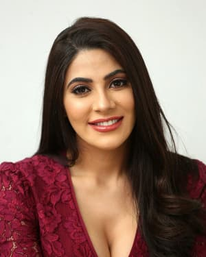 Nikki Tamboli - Chikati Gadilo Chithakotudu Movie Success Meet Photos