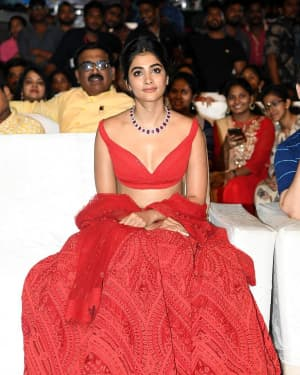 Pooja Hegde - Maharshi Vijayotsavam Function at Vijayawada Photos