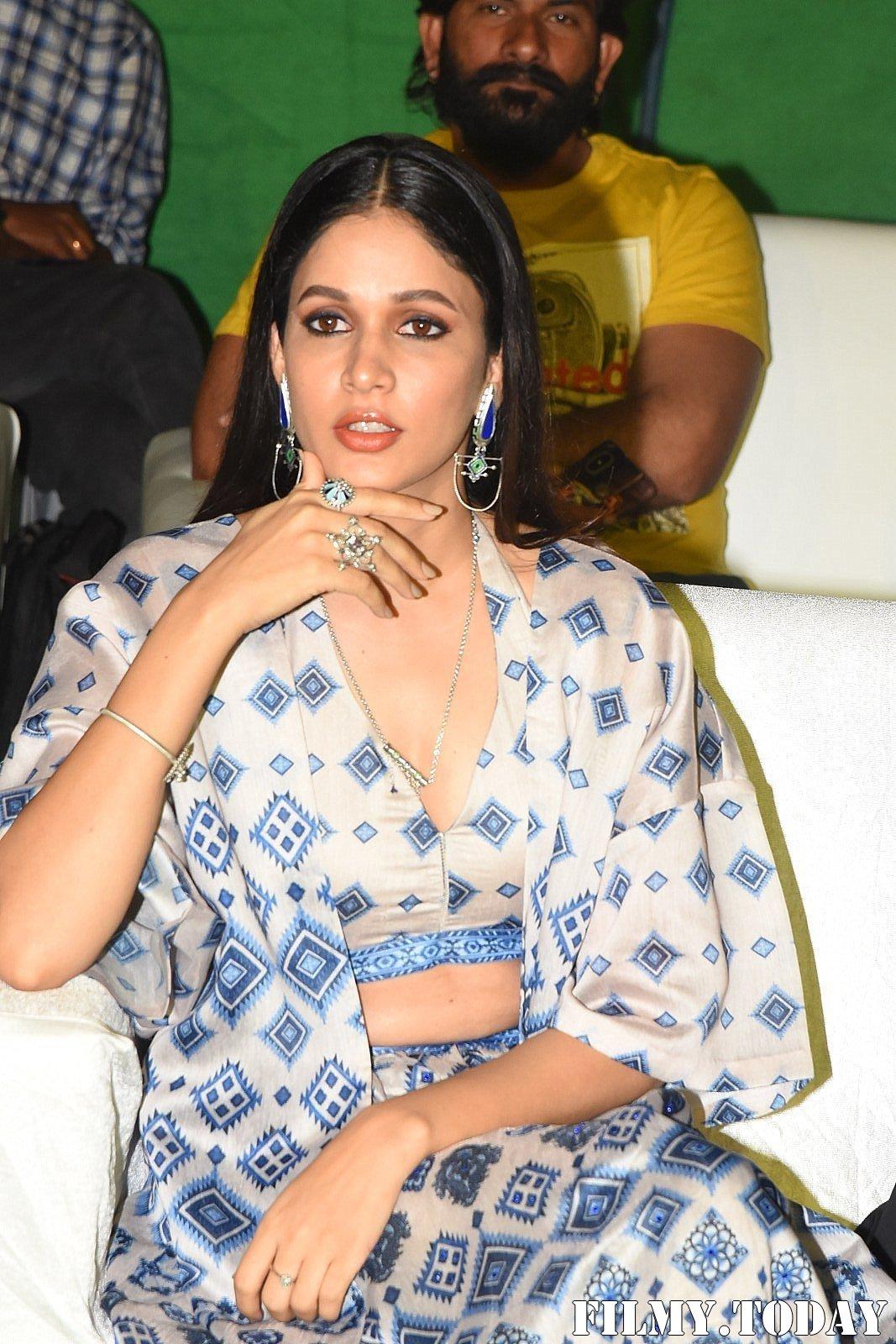 Lavanya Tripathi - Arjun Suravaram Movie Pre-Release Event Photos   Picture 1701789
