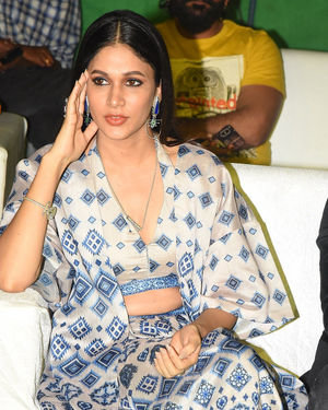 Lavanya Tripathi - Arjun Suravaram Movie Pre-Release Event Photos | Picture 1701787
